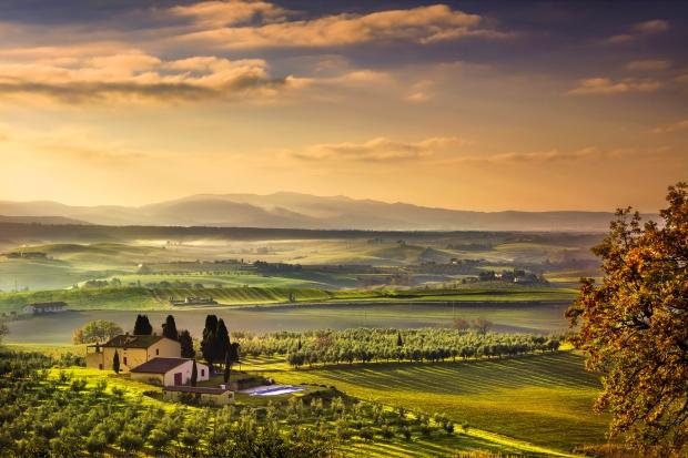 Tuscany Maremma foggy morning, farmland and green fields. Italy.
